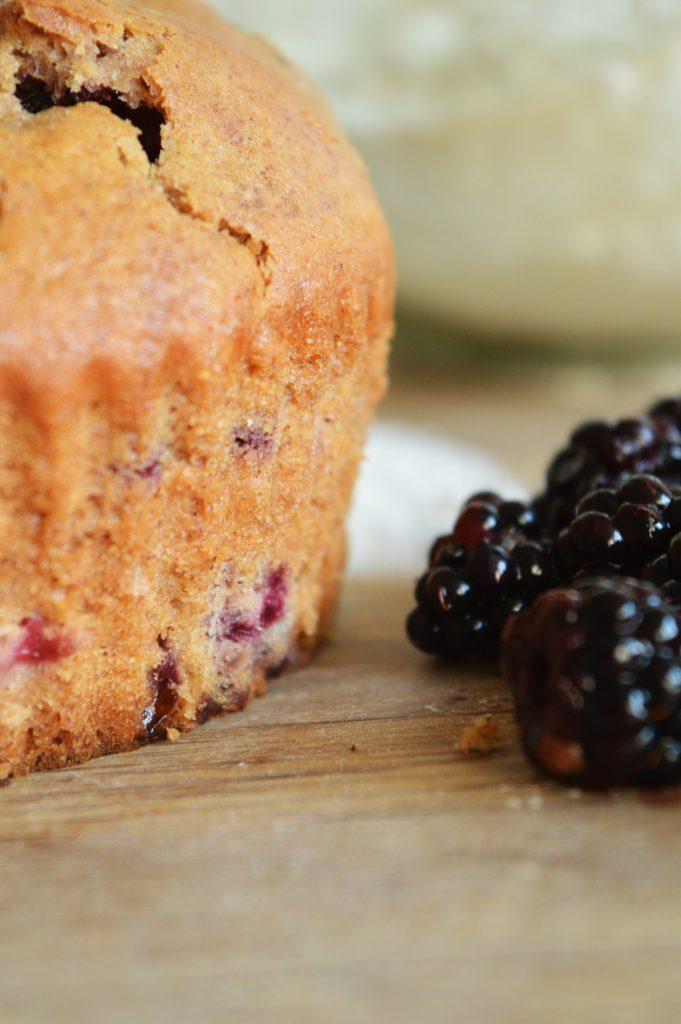 brombaer-muffins-2